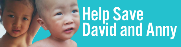 Help David and Anny